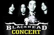 Bkk Concert